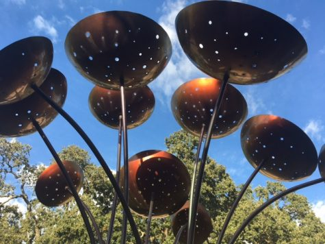 Art among the oaks: Public installations on campus