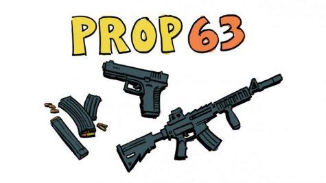 Prop 63 sensibility