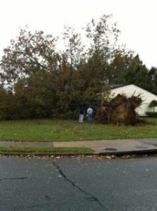 Hurricane Sandy ravages East Coast, students greatly affected