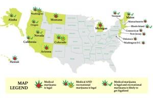 Legalizing Cannabis: Is California next?