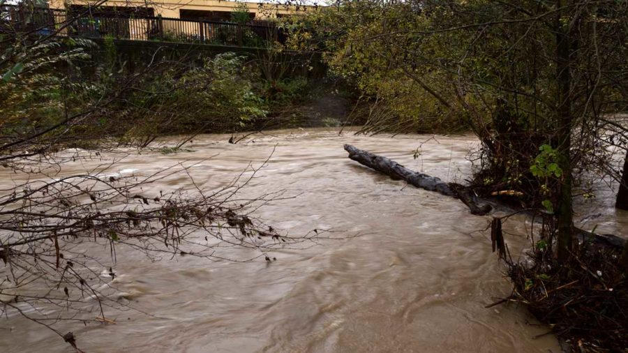Water from the rising Santa Rosa Creek rushes like a river Dec. 11 at the South A Street bike path entrance. (Jeanine Flaton-Buckley/Oak Leaf)