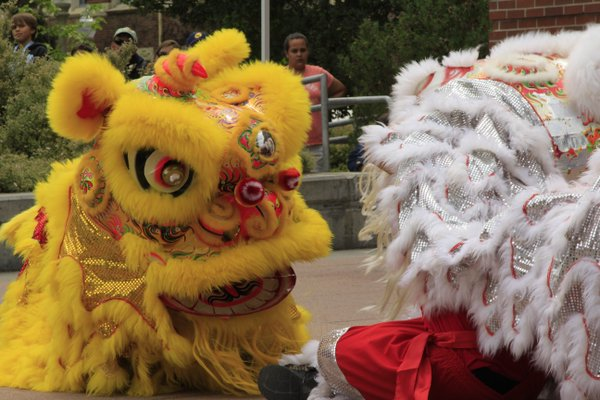 Redwood Empire Chinese Association members preform a lion dance in Bertolini quad.