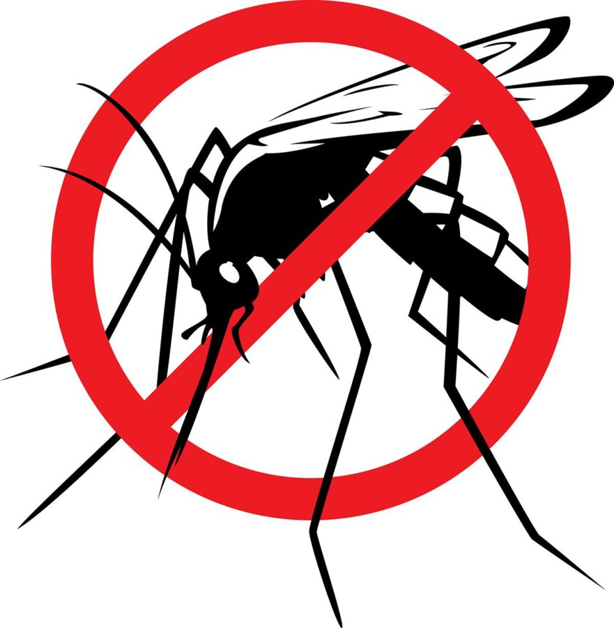 Mosquitos: It's time to wipe out our smallest, deadliest enemy