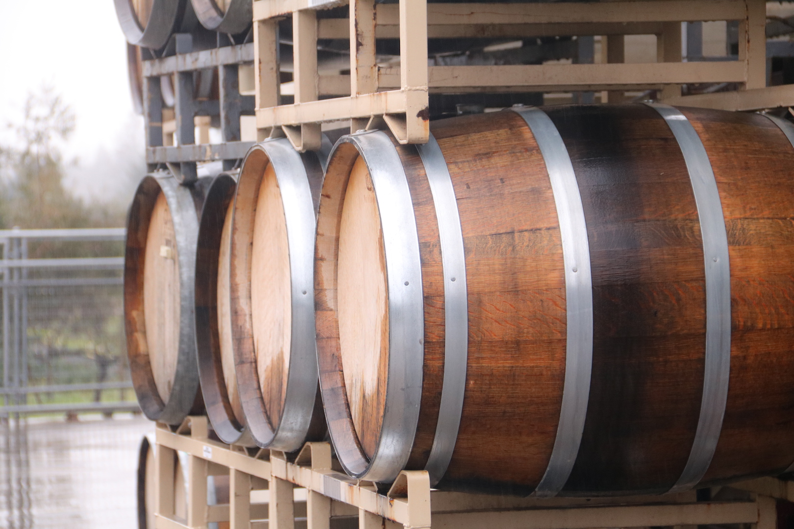 Wine barrels at SRJC's Shone Farm ready to be filled