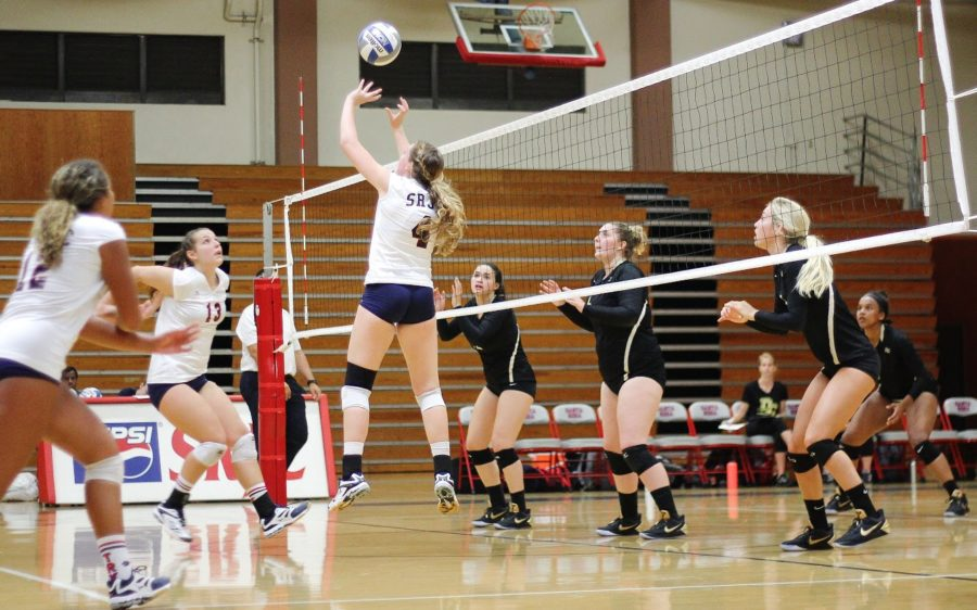 Sophomore Katie Williams waits to pop up and spike the ball in the Bear Cubs loss to San Joaquin Delta College on Sept. 15 in Hael Pavilion.