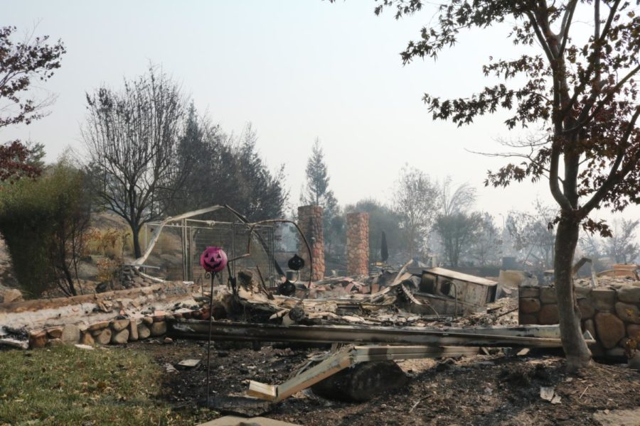 The days after: Fountaingrove, Cardinal Newman and Coffey Park