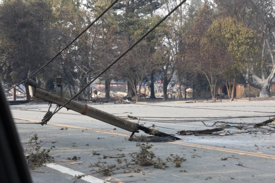 Winds pulled down power lines this week, exacerbating the fire danger.  PC Roberta MacIntyre.