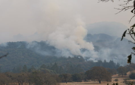 Nuns fire shifts away from Bennett Valley