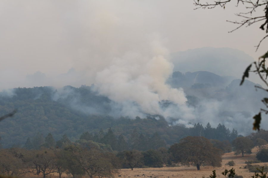 A fire blazes in Annadel State Park east of Annadel Heights.