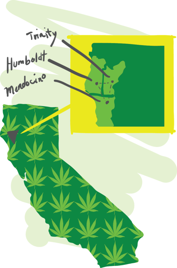Humboldt, Mendocino and Trinity counties comprise the Emerald Triangle.