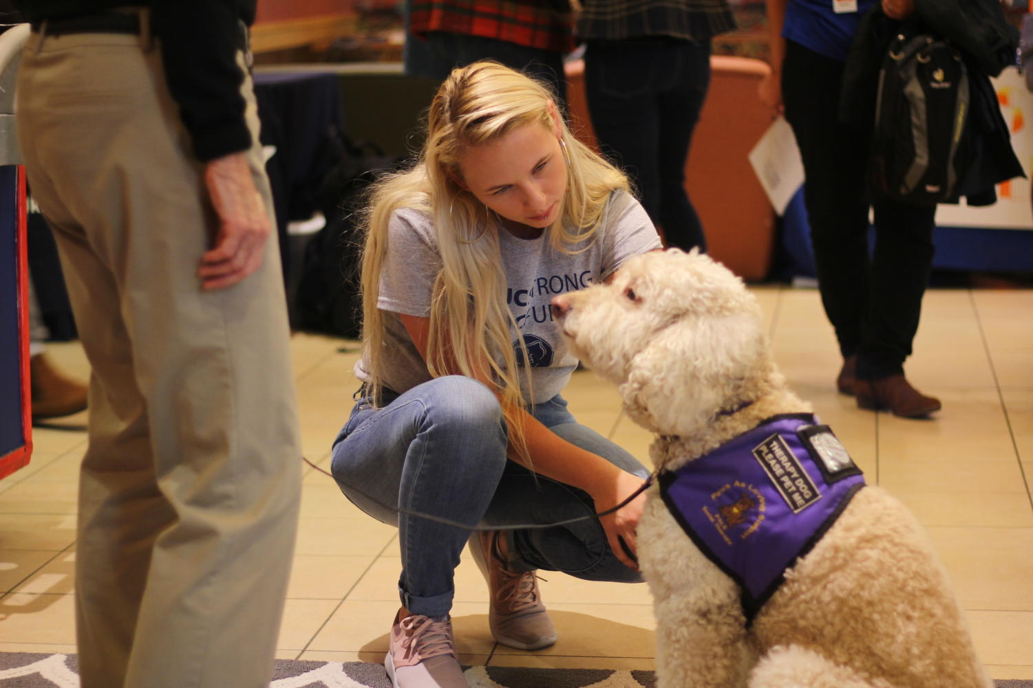 Student utilizes therapy dogs provided by Paws As Loving Support during the SRJC Strong event.
