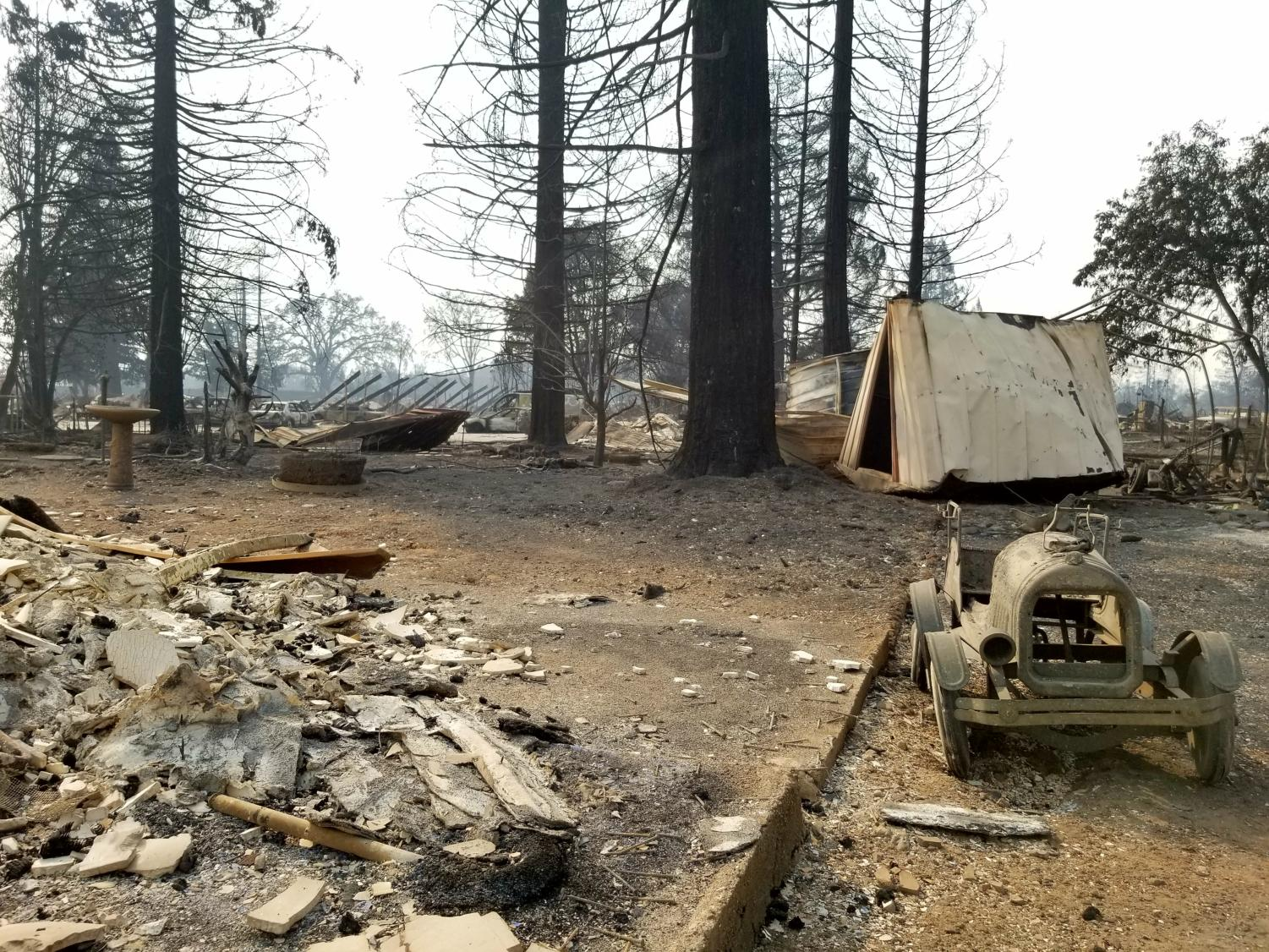 A fire-ravaged neighborhood in Santa Rosa.