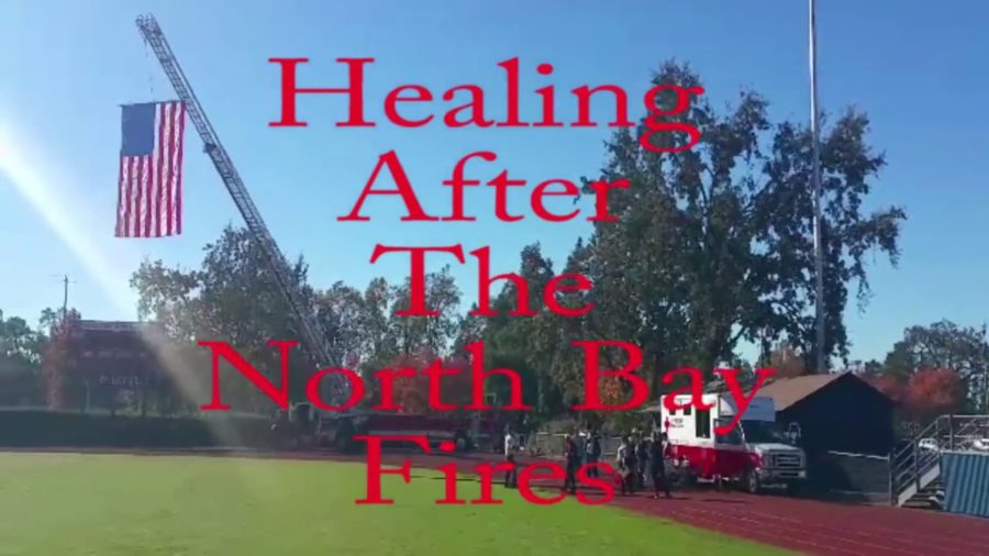 Healing after the North Bay fires