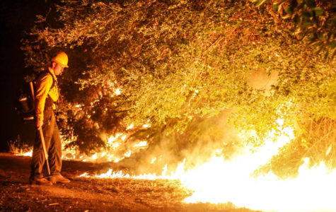 A dry winter has brought California back into the drought conditions that were cited as a major cause of last Fall's wildfires.