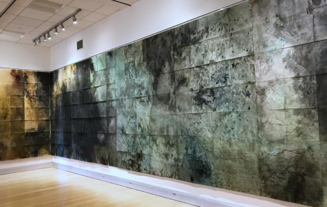 "A portion of ""Divining"" by Kelsey Stephenson fills several walls in the Robert F. Agrella Art Gallery. Photo by Jennifer Do."