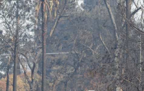 PG&E responsible for some October fires