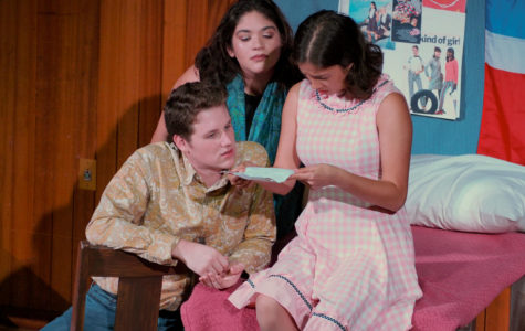 How The Garcia Girls Lost Their Accents: An immigrant's tale