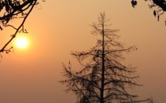 Camp Fire smoke affects students' health, education