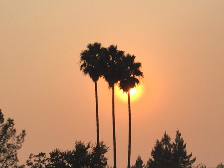 The+sun+sets+behind+a+set+of+palm+trees+near+Analy+Village+as+smoke+from+the+Butte+County+fire+encompasses+the+surrounding+area.