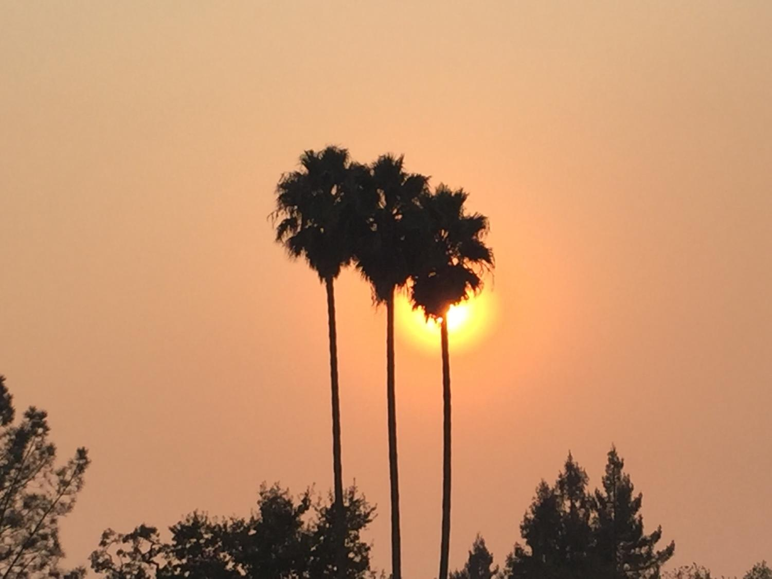 The sun sets behind a set of palm trees near Analy Village as smoke from the Butte County fire encompasses the surrounding area.