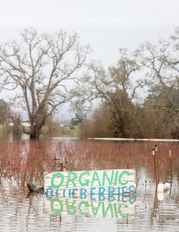 Sonoma County received 10 inches of rain after a county-wide storm caused a power outage at SRJC Santa Rosa campus.