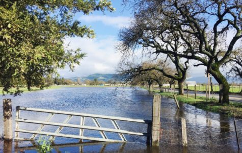 Come hell or high water; Santa Rosa floods close roads