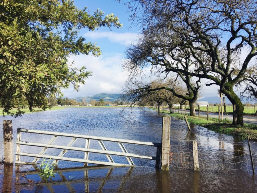 After 24 hours of pouring rain, a break in the storm on Feb. 15 reveals the flooded areas of Sonoma County.