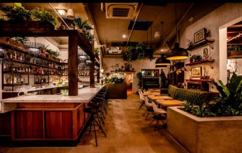 Fern Bar: Sebastopol's newest nightlife destination