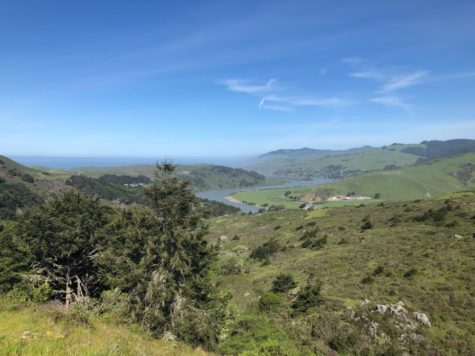 Relaxing hikes in Sonoma County