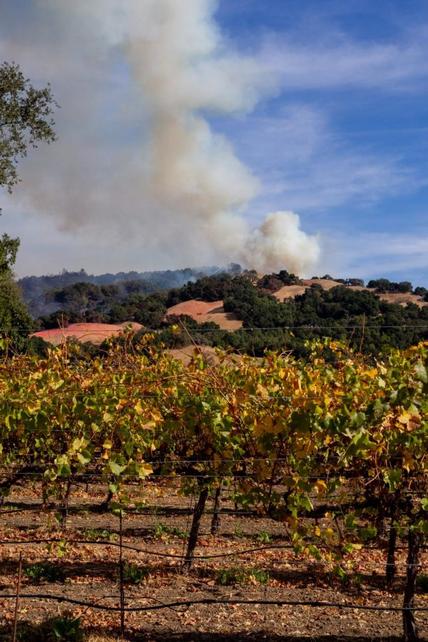 Fires in northeastern Sonoma County began Oct. 23 with the main cities affected being Windsor, Geyserville and Simi.