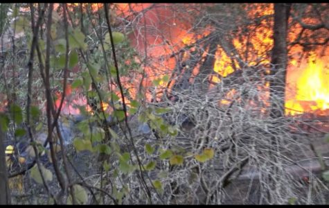 "SRJC-TV: ""The Oak Leaf On-Line"" after the Kincade Fires"