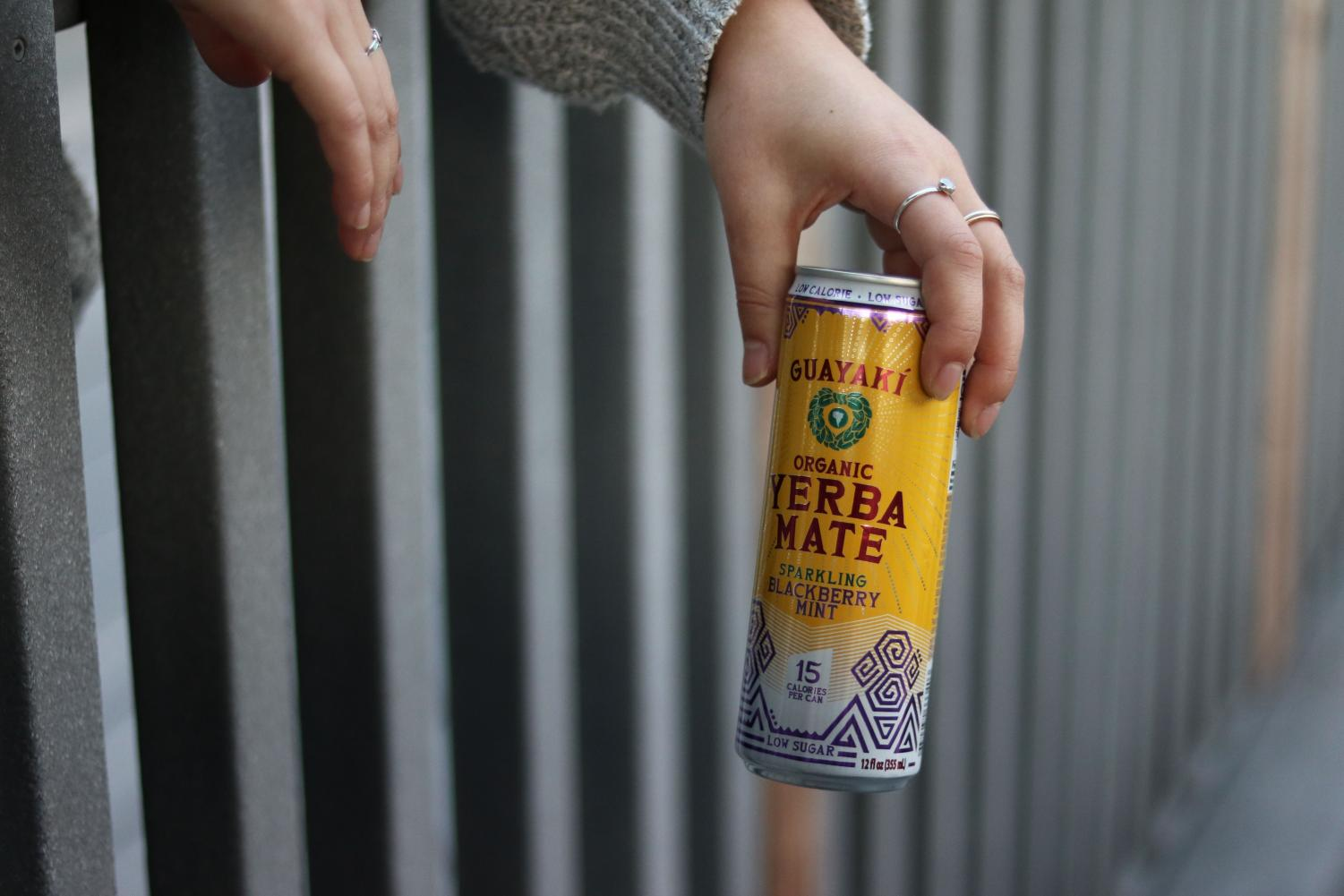An SRJC student with a sparkling Guayaki relaxes along the fences of the Analy village on Jan 28.