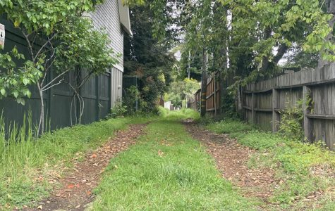 Central Santa Rosa's back alleys offer walkers a peaceful and calming respite from traffic and paved roads.
