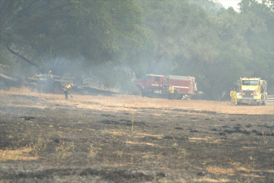Firefighters review the remains of a vegetation fire along Calistoga Road.