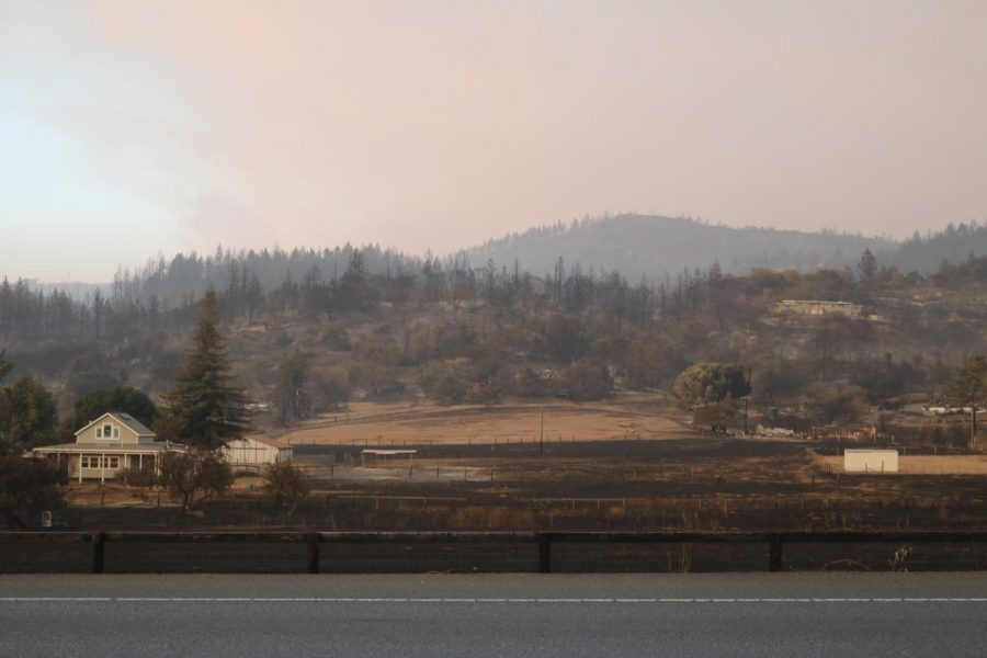 Fire damage along the hills of Hwy 12