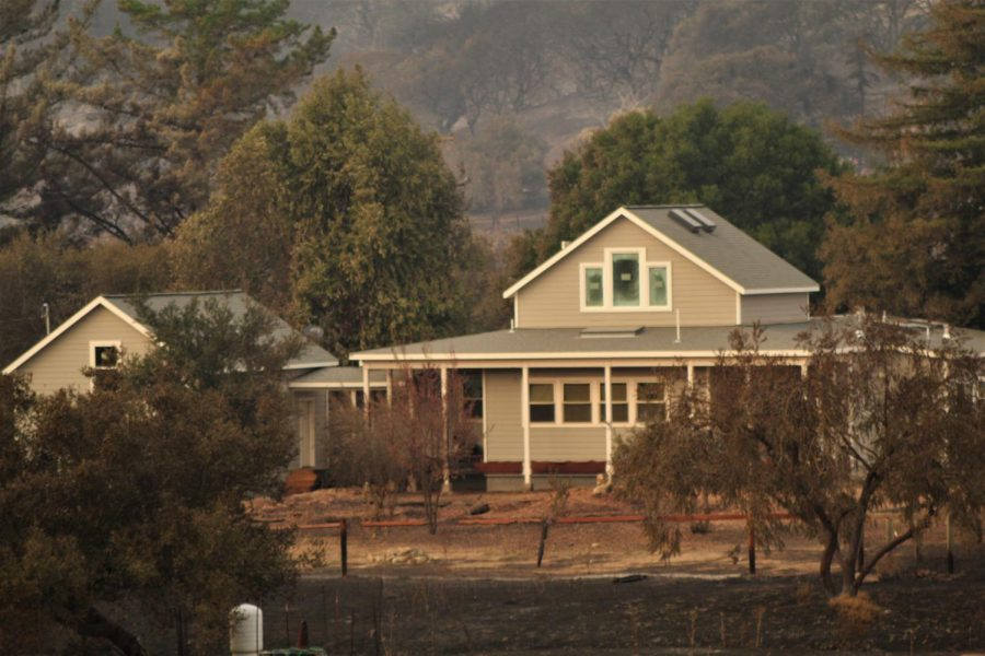 A farmhouse sits in the middle of charred oaks along Highway 12.