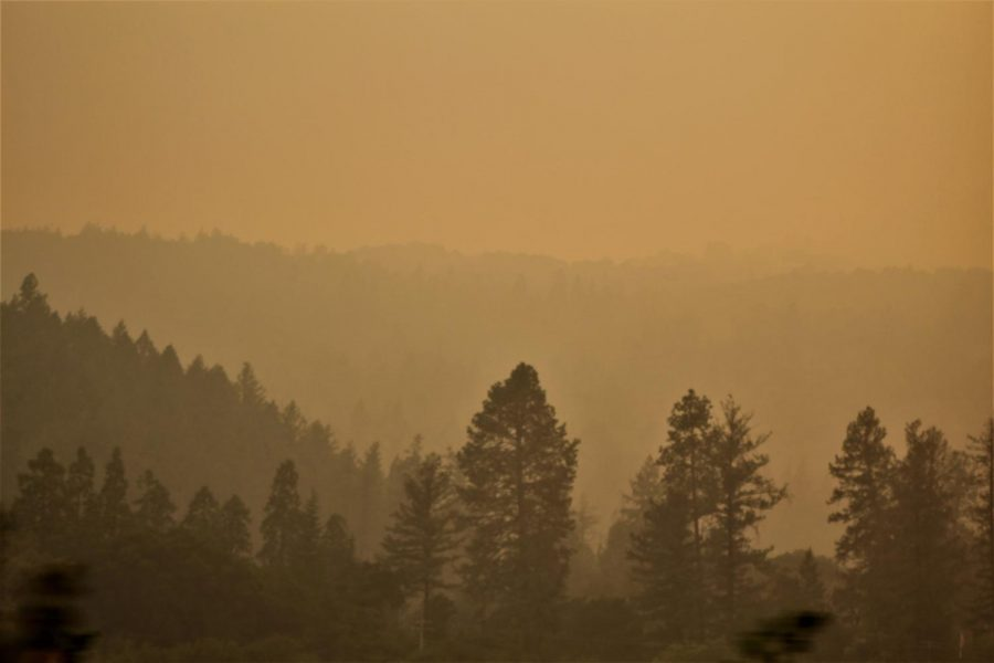 Smoke from the Glass Fire fills the sky over Highway 29.