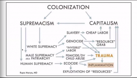A graphic depicting the connection between colonization, supremacy and the engine of capitalism.