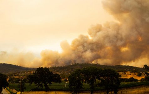 The LNU Lightning Complex Fire roared though five counties in 39 days and destroyed 363,220 acres.