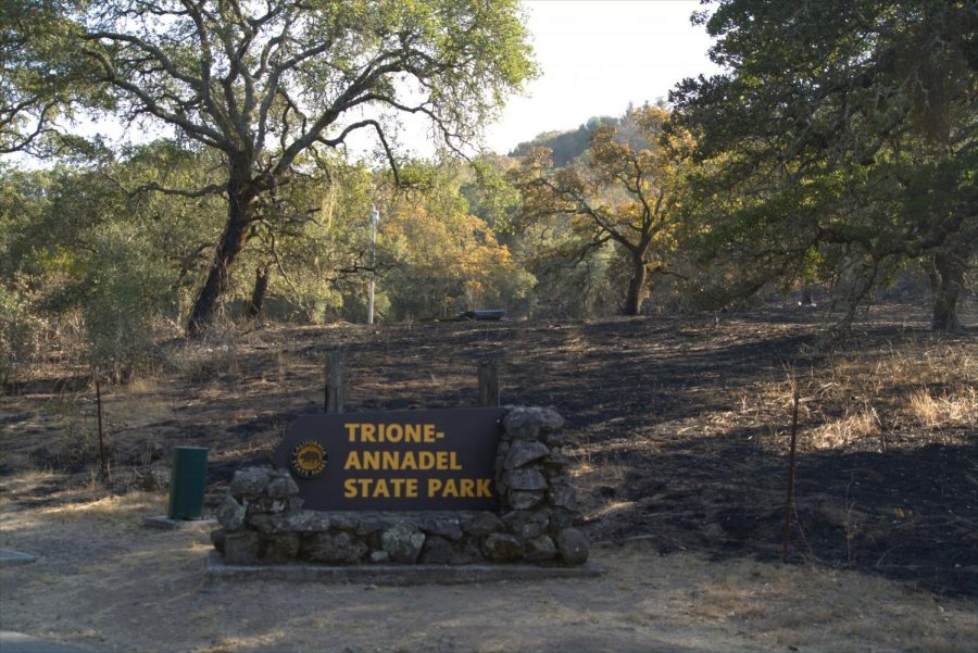 Trione-Annadel State Park sign still standing among the burnt ground