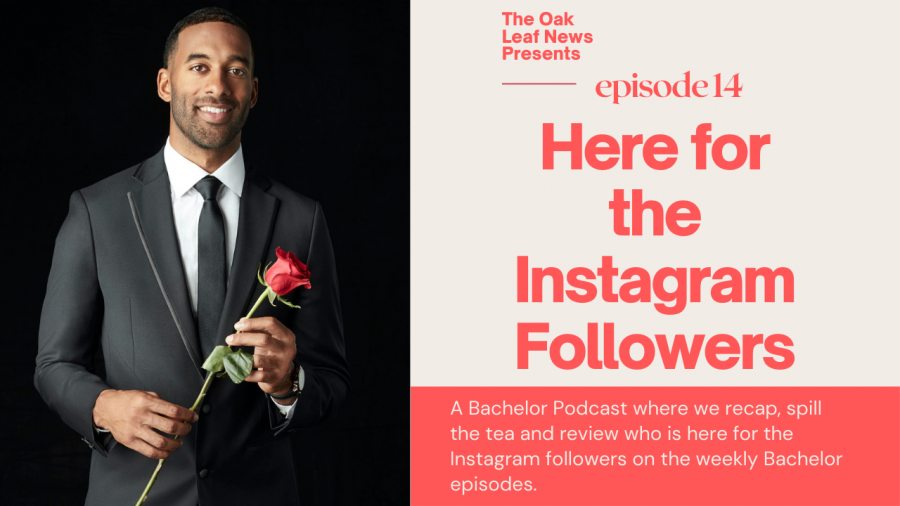 Here for the Instagram Followers Ep. 14