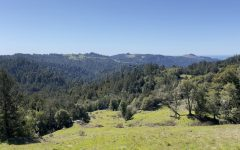 Navigation to Story: Willow Creek Road Trail: Let summer hiking begin